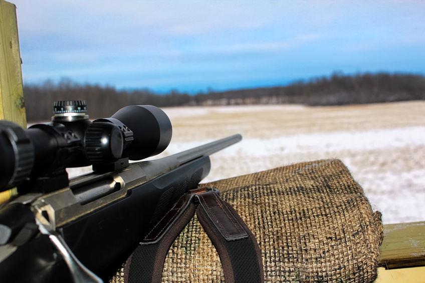 Hunting from a Hunting Deer Blind